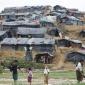 কক্সবাজার উখিয়ায় ক্যাম্পে তিন রোহিঙ্গার গলাকাটা লাশ